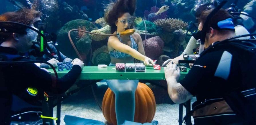Играть в покерных турнирах